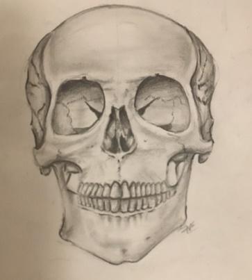 nicoles_drawing.jpg